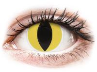 Alensa.nl - Contactlenzen - Gele Cat Eye contactlenzen - ColourVue Crazy