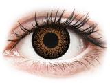 Alensa.nl - Contactlenzen - Bruine contactlenzen - ColourVUE Eyelush