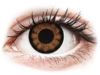 Alensa.nl - Contactlenzen - Bruine Sexy Brown contactlenzen - ColourVUE BigEyes